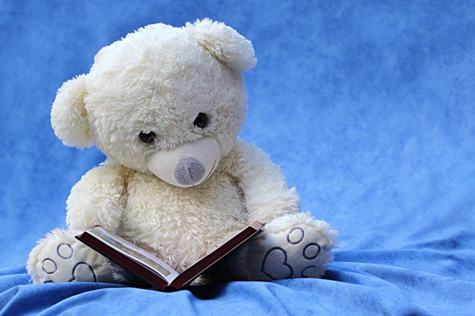 macko, kniha, čítanie, rozprávky